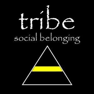 tribe-employmeet.com